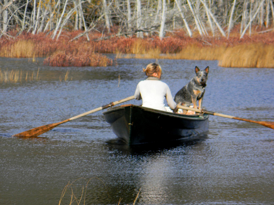 Fishing lodges in northern maine for Fishing resorts near me
