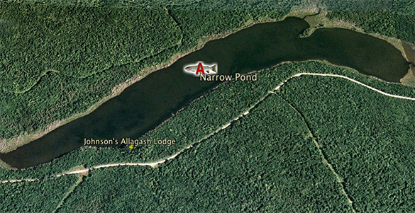 thumb Narrow-Pond-Piscataquis-Maine
