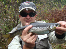landlocked salmon 11