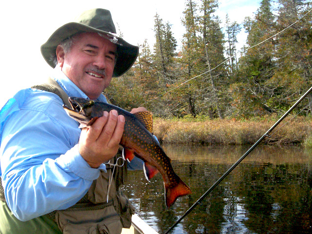 Fly fishing for native brook trout salmon and muskie for Musky fly fishing